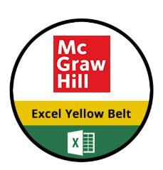 Excel Yellow Belt