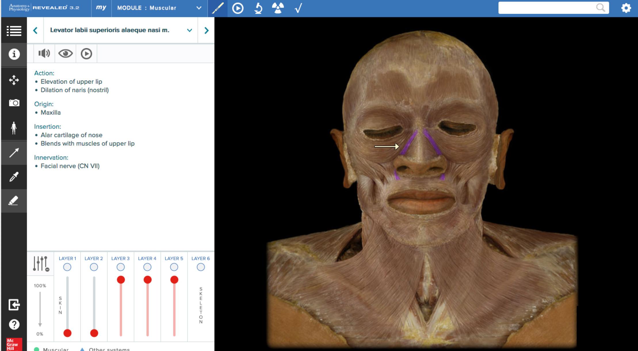 Anatomy & Physiology | REVEALED