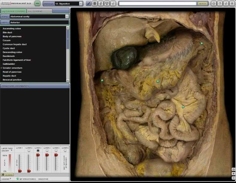 Cadaver Labs Screenshot 3
