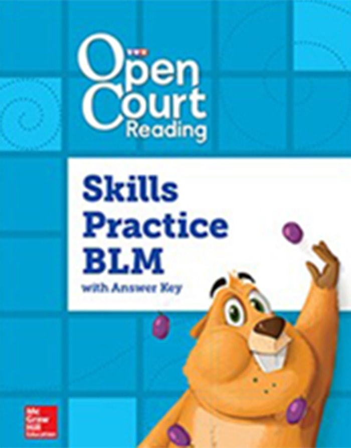Cover of Grade 3 Skills Practice BLM with Answer Key