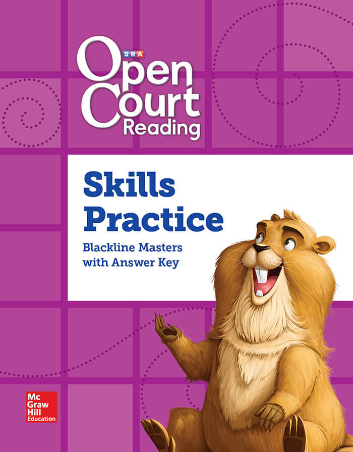Cover of Grade 4 Skills Practice BLM with Answer Key