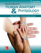 Anatomy & Physiology 2-Semester   McGraw-Hill Higher Education