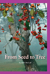 Science, A Closer Look, From Seed to Tree (6 copies)