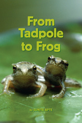 Science, A Closer Look, From Tadpole to Frog (6 copies)