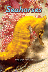 Science, A Closer Look, Grade 3, Leveled Reader Seahorses (6 copies)