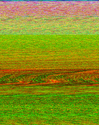 Early Interventions in Reading Level K, Activity Book