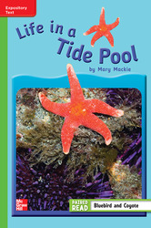 Reading Wonders Leveled Reader Life in a Tide Pool: Beyond Unit 4 Week 3 Grade 3