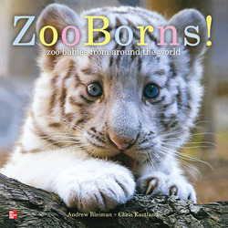 Reading Wonders Literature Big Book: Zooborns! Grade K