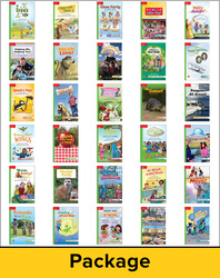 Reading Wonders, Grade 1, Leveled Reader Package Beyond