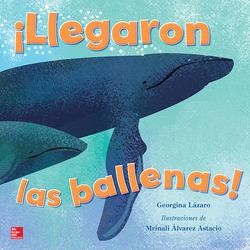 Lectura Maravillas Literature Big Book: ¡Llegaron las ballenas! Grade K