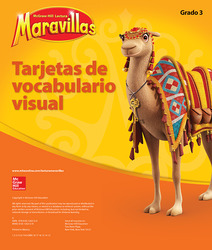 Lectura Maravillas, Grade 3, Visual Vocabulary Cards