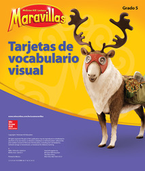 Lectura Maravillas, Grade 5, Visual Vocabulary Cards
