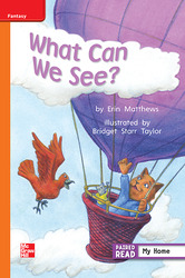 Reading Wonders, Grade 1, Leveled Reader What Can We See?, Approaching, Unit 1, 6-Pack