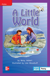 Reading Wonders, Grade 2, Leveled Reader A Little World, On Level, Unit 4, 6-Pack