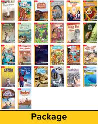Reading WonderWorks Apprentice Leveled Readers Package 1 of 30 Grade 4