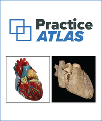 Connect Online Access for Practice Atlas for Anatomy & Physiology 1st Edition