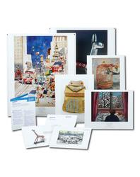 Art Prints for Theme Enrichment - Homes