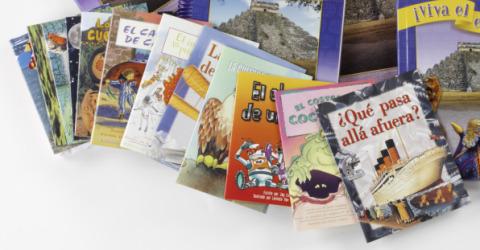 ¡Viva el español!: ¡Adelante!, Classroom Library Set (12 Books)