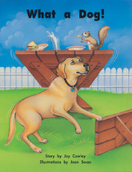 Story Basket, What a Dog!, Big Book