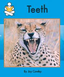 Story Box, (Level G) Teeth