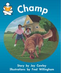 Story Box, Champ