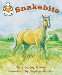 Story Box, (Level J) Snakebite