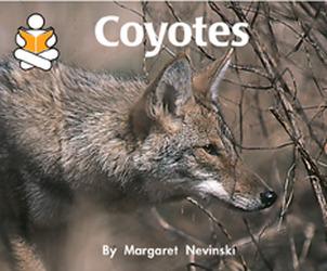 Story Box, (Level J) Coyotes