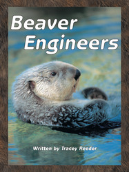Take Two, Beaver Engineers, Level L, 6-pack