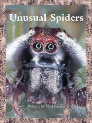 Take Two, (Level N - Nonfiction) Unusual Spiders 6-pack