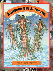 Take Two, A Strange Day at the Zoo, Level O, Single Copy