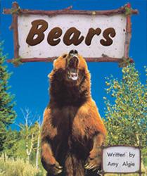Storyteller, First Snow, (Level B) Bears 6-pack