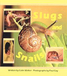 Wonder World, Slugs and Snails