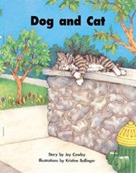 Story Basket, Dog and Cat, Big Book