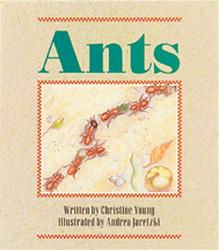 Wonder World, Ants