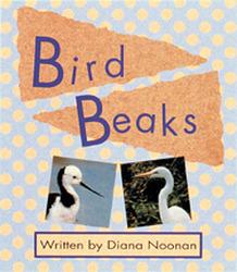 Wonder World, (Level K) Bird Beaks 6-pack