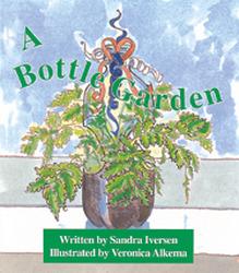 Wonder World, (Level F) A Bottle Garden 6-pack