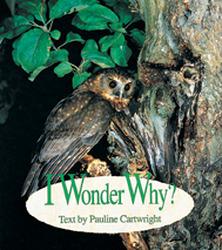 Wonder World, (Level G) I Wonder Why? 6-pack