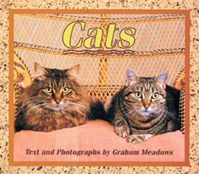 Wonder World, (Level F) Cats 6-pack