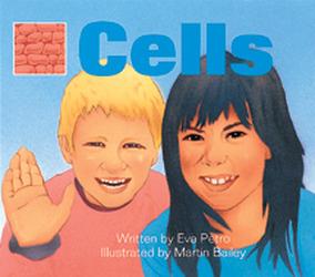Wonder World, (Level L) Cells 6-pack