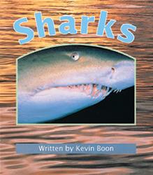 Wonder World, (Level M) Sharks 6-pack