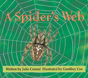 Wonder World, A Spider's Web