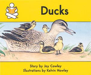Story Box, (Level F) Ducks