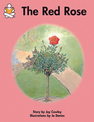 Story Box, (Early Emergent) The Red Rose, Big Book