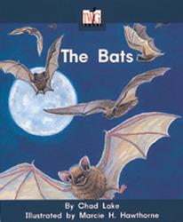 TWIG, (Level A) Bats 6-pack