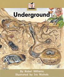 TWIG, (Level D) Underground 6-pack