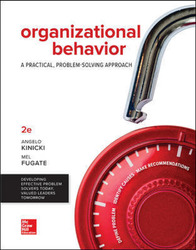 Loose Leaf for Organizational Behavior: A Practical, Problem-Solving Approach 2nd Edition