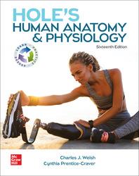 Hole's Human Anatomy & Physiology 16th Edition