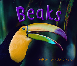Gear Up, (Level F) Beaks, 6-pack