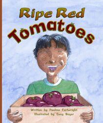 Gear Up, (Level I) Ripe Red Tomatoes, 6-pack
