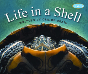 Gear Up, Life In A Shell, Grade 2, Single Copy